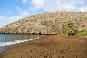 Galapagos Islands beach tour 2021