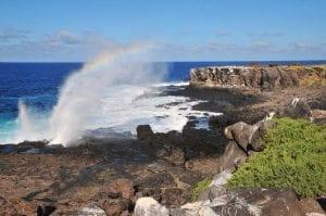 Galapagos Island Tour 2021