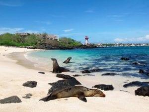 Galapagos Islands San Cristobal Tour 2021