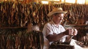 Cuba Cigar Tour 2022