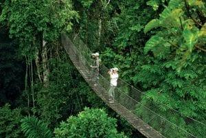 South American Amazon Tour 2021