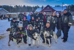 Group Husky Sled Dog 2021