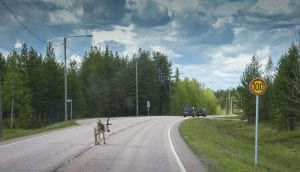 Finland Trip 2021