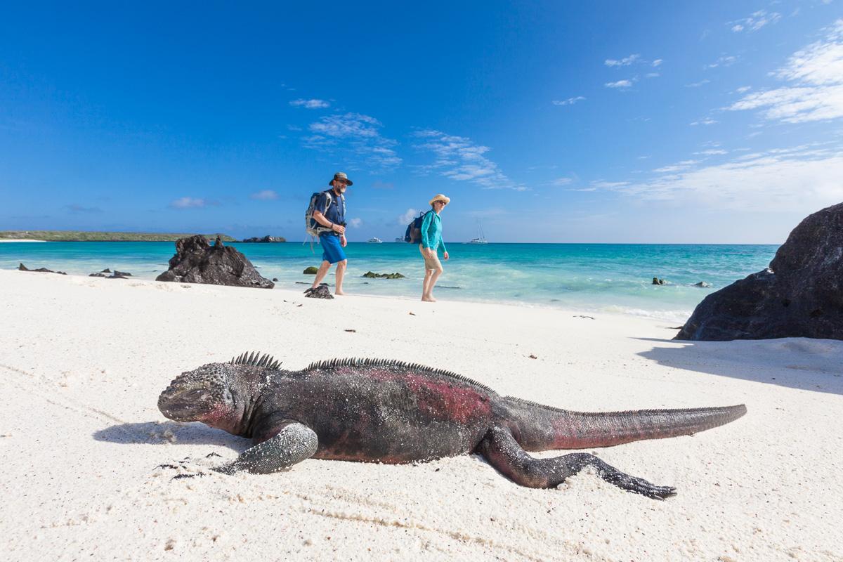 Galapagos Islands Tour 2022